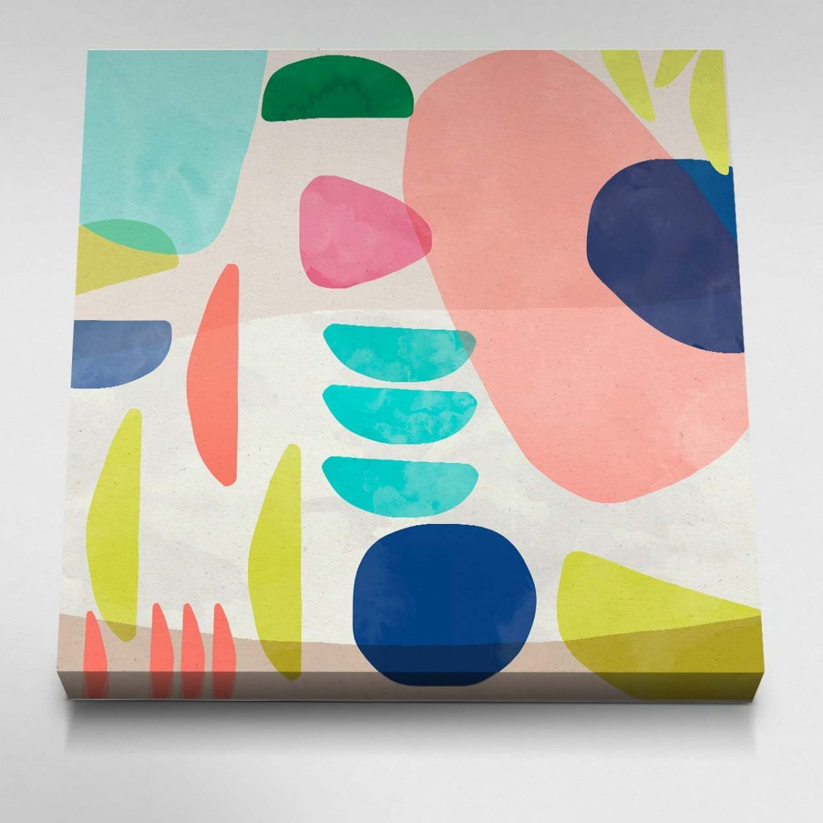 Organic Bold Shapes Canvas Picture