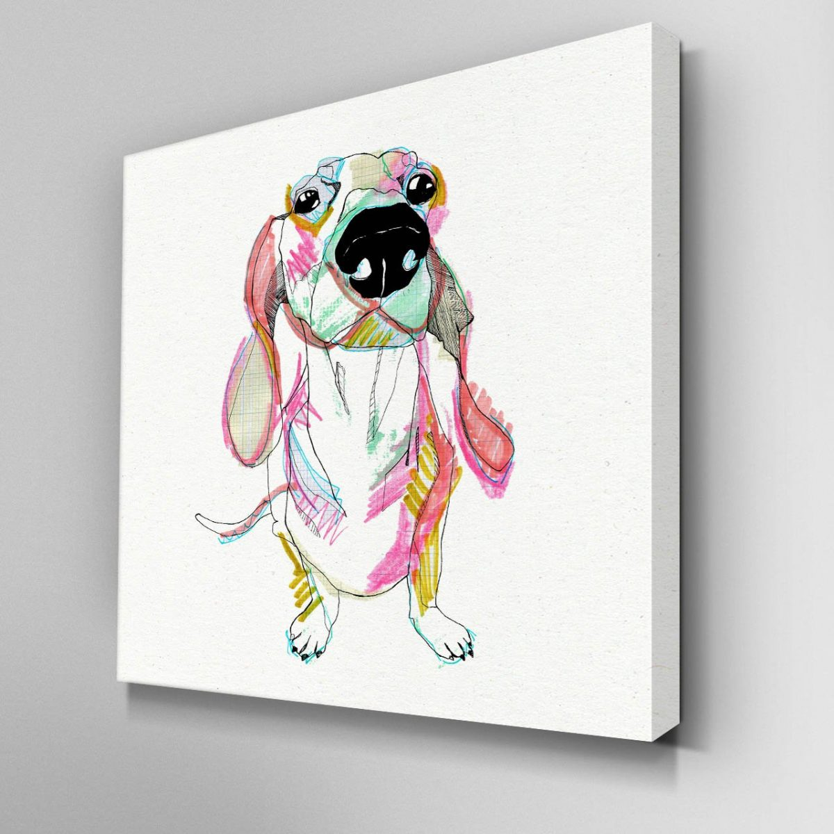 Illustrated Sausage Dog Canvas Picture